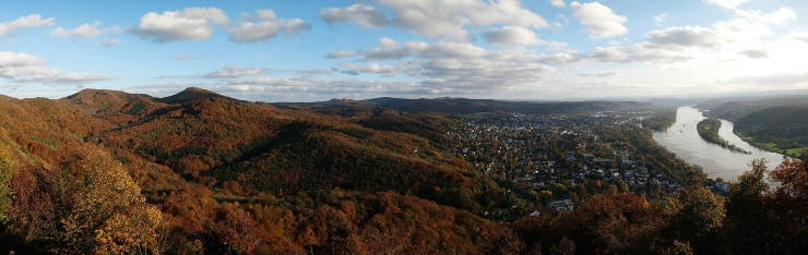 Rhine Panorama