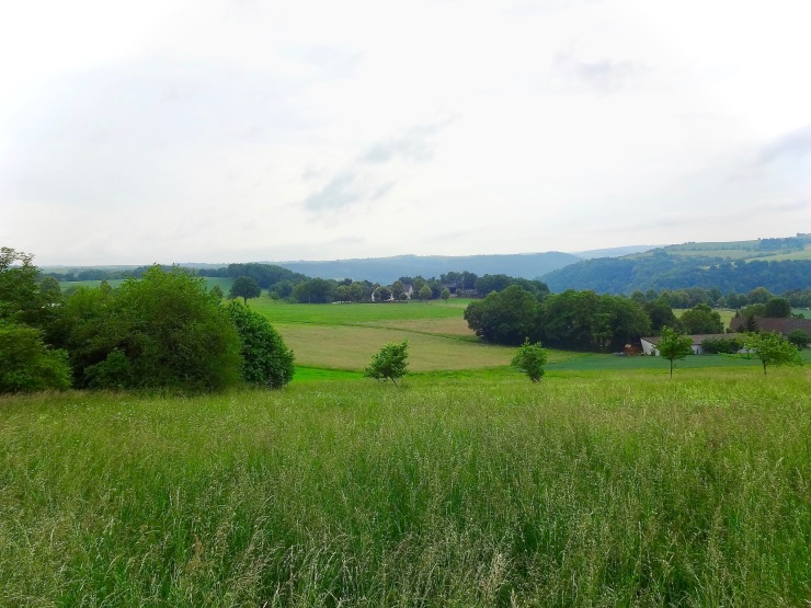 meadow above St. Goar