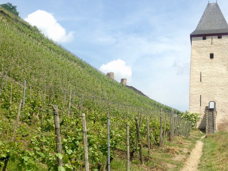 Tower in vineyards